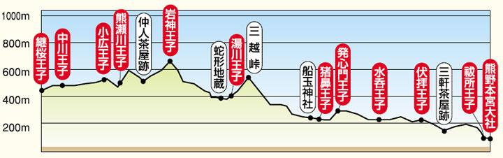 tsugizakura-hongu-chart.jpg