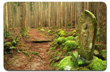 Kumano_Kodo_Pilgrimage_route.jpg