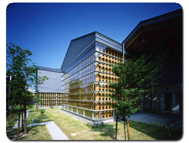 Minakata_Kumagusu_Archives.jpg