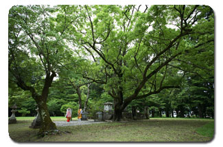 Oyunohara.jpg