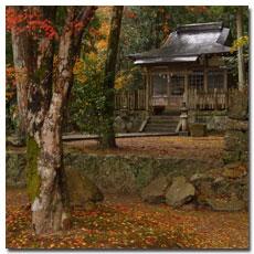 takijiri-oji-fall.jpg