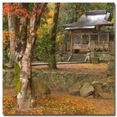 takijiri-oji-fall-2.jpg
