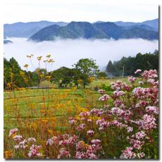 takahara-view-2.jpg