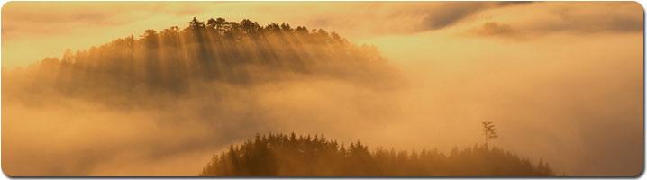 field-of-clouds-pan.jpg