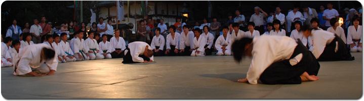 Aikido_pan.jpg
