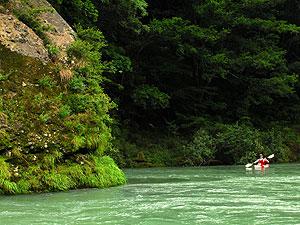 Kayak-Kumano.jpg