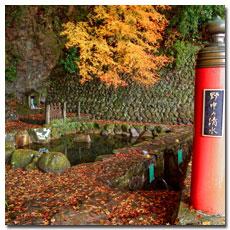 nonaka-no-shimizu-spring.jpg