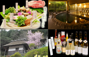 onsen-gastronomy.png