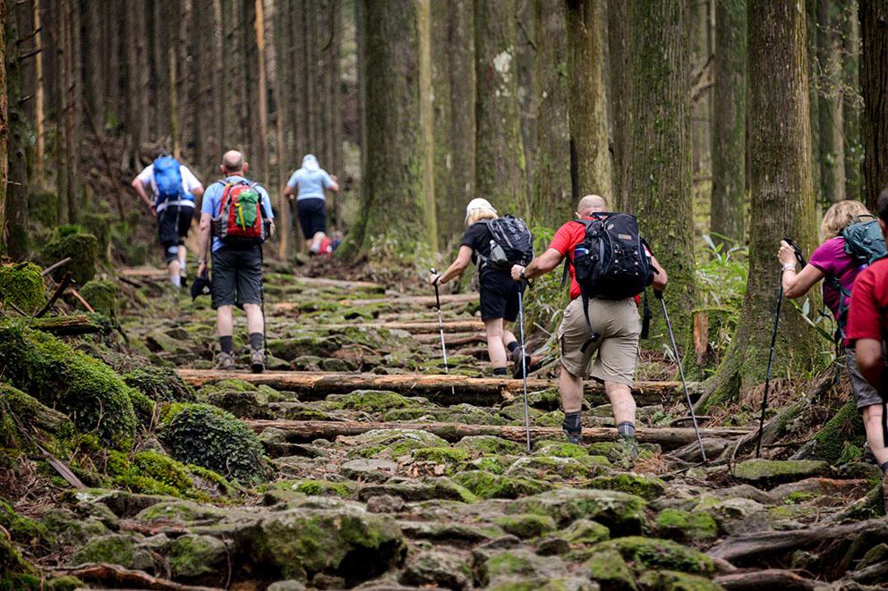 Kumano Kodo Pilgrimage Route Nakahechi