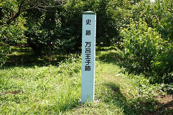 熊野古道中辺路 万呂王子