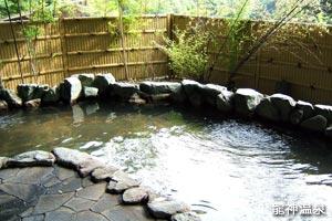 龍神温泉 元湯の浴室