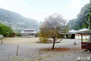 渡瀬 緑の広場キャンプ場
